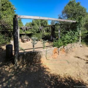 the arboretum nursery